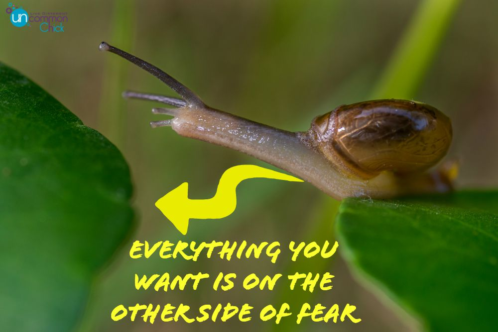Everything you want is on the other side of fear (or your comfort zone) #comfortzone #escapenormal #fear